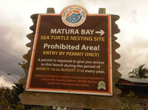 Matura Bay Turtle Nesting Site
